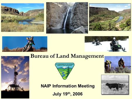 Bureau of Land Management NAIP Information Meeting July 19 th, 2006.
