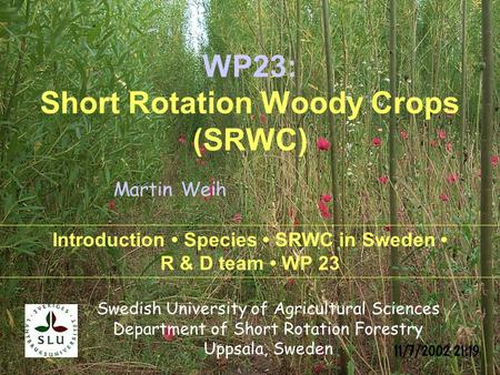 Swedish University of Agricultural Sciences Department of Short Rotation Forestry Uppsala, Sweden Introduction Species SRWC in Sweden R & D team WP 23.