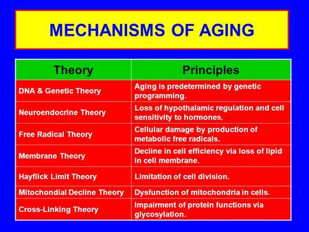 MECHANISMS OF AGING TheoryPrinciples DNA & Genetic Theory Aging is predetermined by genetic programming. Neuroendocrine Theory Loss of hypothalamic regulation.