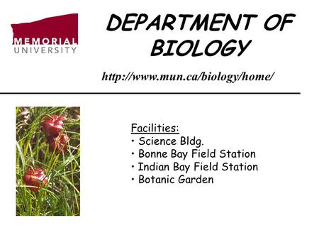 DEPARTMENT OF BIOLOGY Facilities: Science Bldg. Bonne Bay Field Station Indian Bay Field Station Botanic Garden
