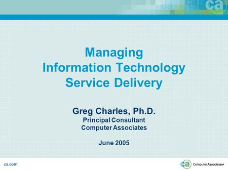 Managing Information Technology Service Delivery