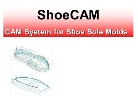 ShoeCAM CAM System for Shoe Sole Molds.