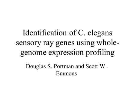 Identification of C. elegans sensory ray genes using whole- genome expression profiling Douglas S. Portman and Scott W. Emmons.