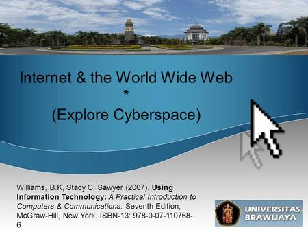 Internet & the World Wide Web * (Explore Cyberspace)