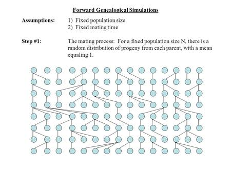 Forward Genealogical Simulations Assumptions:1) Fixed population size 2) Fixed mating time Step #1:The mating process: For a fixed population size N, there.