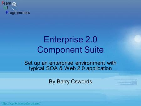 Team Of Programmers  Enterprise 2.0 Component Suite Set up an enterprise environment with typical SOA & Web 2.0 application.