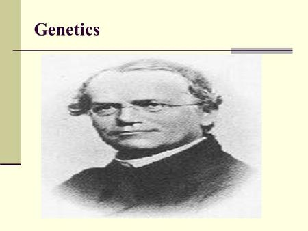 Genetics. Mendel's Laws of Heredity Heredity Traits allele.