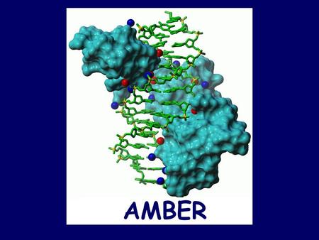 AMBER. AMBER 7 What is AMBER? –A collective name for a suite of programs that allow users to carry out molecular dynamic simulations. –And a set of molecular.