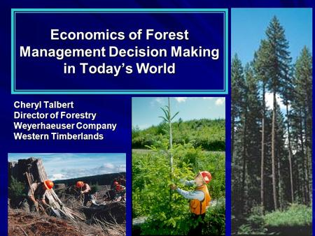 Economics of Forest Management Decision Making in Today's World Cheryl Talbert Director of Forestry Weyerhaeuser Company Western Timberlands.