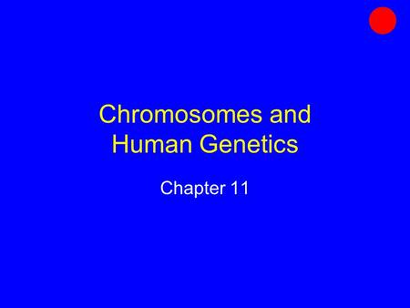 Chromosomes and Human Genetics Chapter 11. Genes Units of information about heritable traits In eukaryotes, distributed among chromosomes Each has a particular.