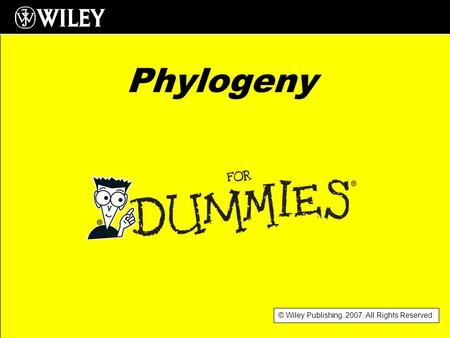 © Wiley Publishing. 2007. All Rights Reserved. Phylogeny.