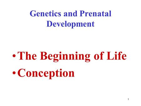 Genetics and Prenatal Development