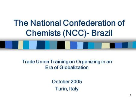 1 The National Confederation of Chemists (NCC)- Brazil Trade Union Training on Organizing in an Era of Globalization October 2005 Turin, Italy.