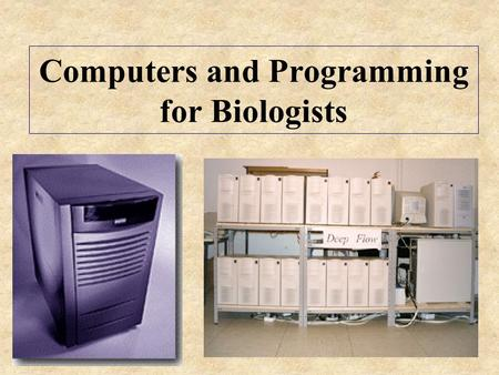 Computers and Programming for Biologists. What is Bioinformatics? The use of information technology to collect, analyze, and interpret biological data.