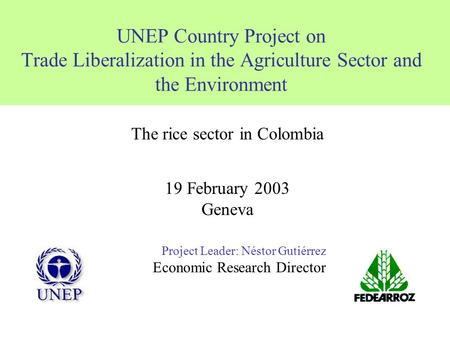 UNEP Country Project on Trade Liberalization in the Agriculture Sector and the Environment Project Leader: Néstor Gutiérrez Economic Research Director.