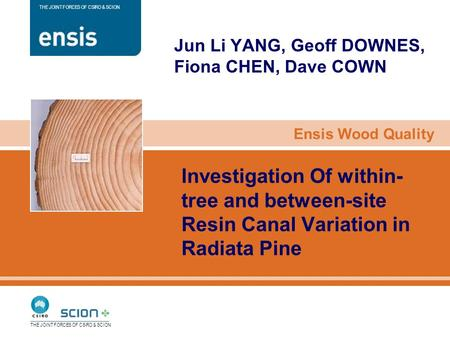 Ensis Wood Quality THE JOINT FORCES OF CSIRO & SCION Investigation Of within- tree and between-site Resin Canal Variation in Radiata Pine Jun Li YANG,