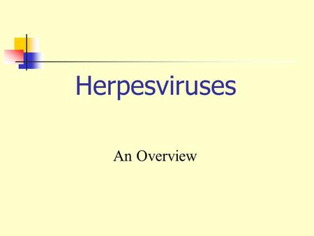 Herpesviruses An Overview.