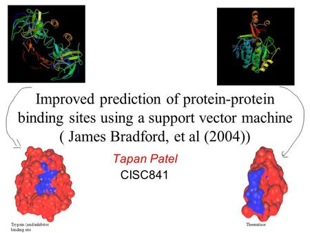 Improved prediction of protein-protein binding sites using a support vector machine ( James Bradford, et al (2004)) Tapan Patel CISC841 Trypsin (and inhibitor.