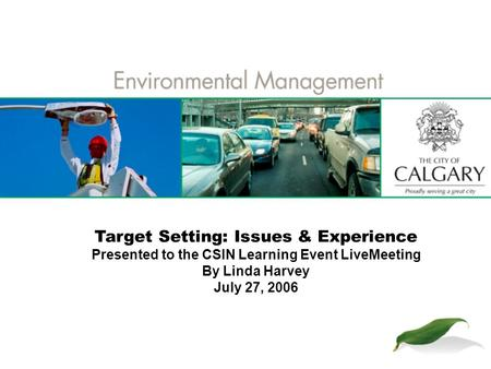 Target Setting: Issues & Experience Presented to the CSIN Learning Event LiveMeeting By Linda Harvey July 27, 2006.