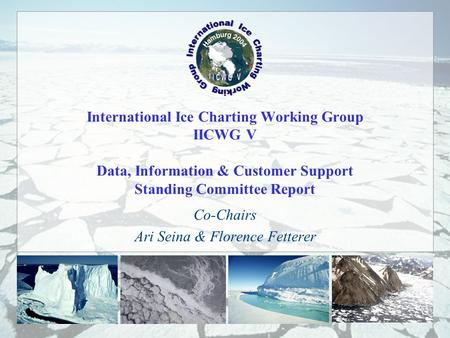 International Ice Charting Working Group IICWG V Data, Information & Customer Support Standing Committee Report Co-Chairs Ari Seina & Florence Fetterer.
