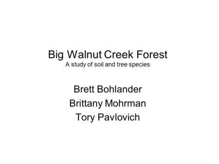 Big Walnut Creek Forest A study of soil and tree species Brett Bohlander Brittany Mohrman Tory Pavlovich.