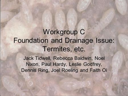 Workgroup C Foundation and Drainage Issue: Termites, etc. Jack Tidwell, Rebecca Baldwin, Noel Nixon, Paul Hardy, Leslie Godfrey, Dennis Ring, Joel Roeling.