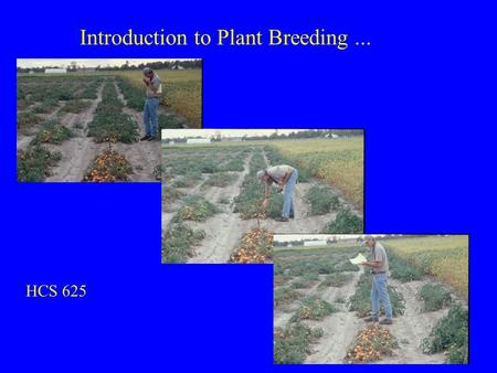 Introduction to Plant Breeding... HCS 625. Outline: What is plant breeding? Human population growth, agricultural production, and environmental impacts.