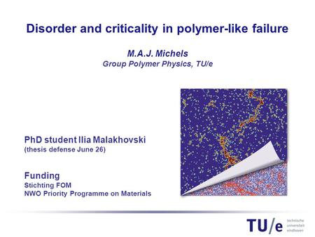 PhD student Ilia Malakhovski (thesis defense June 26) Funding Stichting FOM NWO Priority Programme on Materials Disorder and criticality in polymer-like.