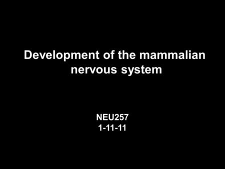 Development of the mammalian nervous system NEU257 1-11-11.