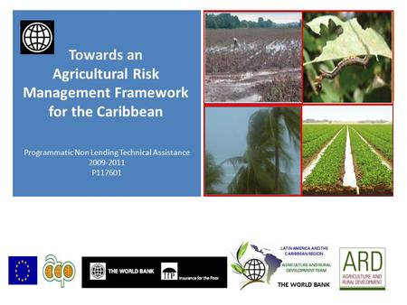 + Programmatic Non Lending Technical Assistance 2009-2011 P117601 Towards an Agricultural Risk Management Framework for the Caribbean.
