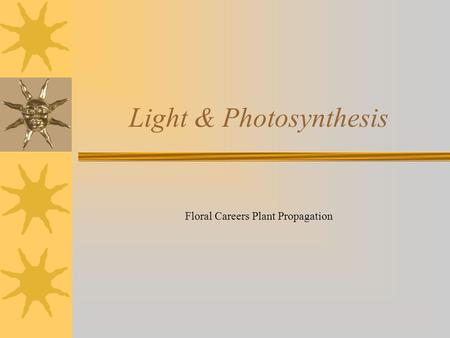 Floral Careers Plant Propagation Light & Photosynthesis.