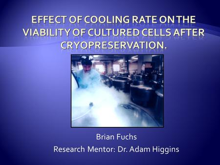 Brian Fuchs Research Mentor: Dr. Adam Higgins