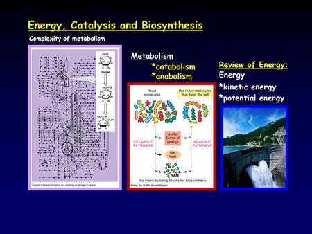 Energy, Catalysis and Biosynthesis Metabolism *catabolism *anabolism Complexity of metabolism Review of Energy: Energy *kinetic energy *potential energy.