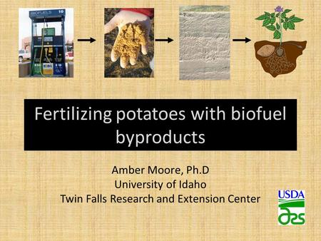 Fertilizing potatoes with biofuel byproducts Amber Moore, Ph.D University of Idaho Twin Falls Research and Extension Center.