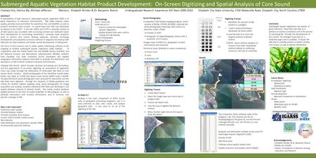 Submerged Aquatic Vegetation Habitat Product Development: On-Screen Digitizing and Spatial Analysis of Core Sound Chelsea Vick, Patrina Bly, Michael JeffersonMentors: