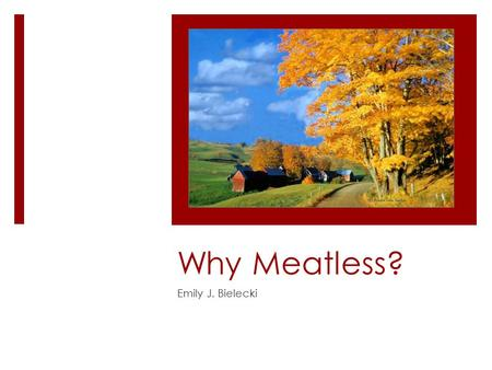 "Why Meatless? Emily J. Bielecki. Did You Know?  The meat industry is responsible for nearly 1/5 of the man-made greenhouse gasses (""Urged…"" 2010)"