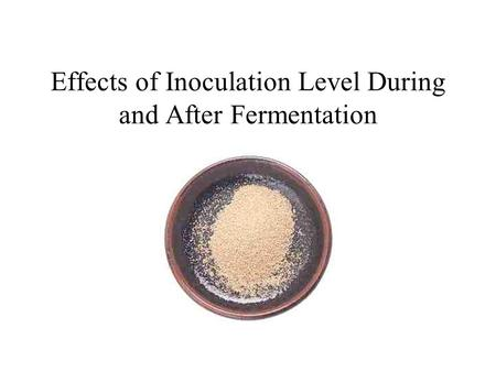 Effects of Inoculation Level During and After Fermentation.