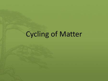 Cycling of Matter. What will we learn? Cycling of matter within living systems Example of living system: compost bin.