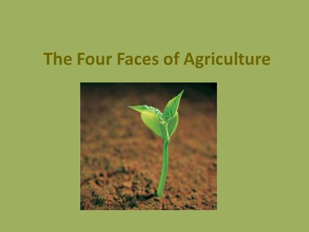 The Four Faces of Agriculture. Food System All the steps it takes to get food from farm to table. These steps include: 1. Production (on the farm) 2.