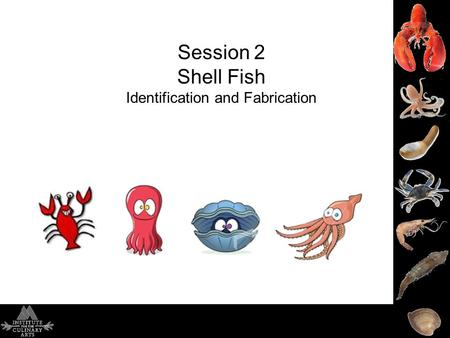 Session 2 Shell Fish Identification and Fabrication.