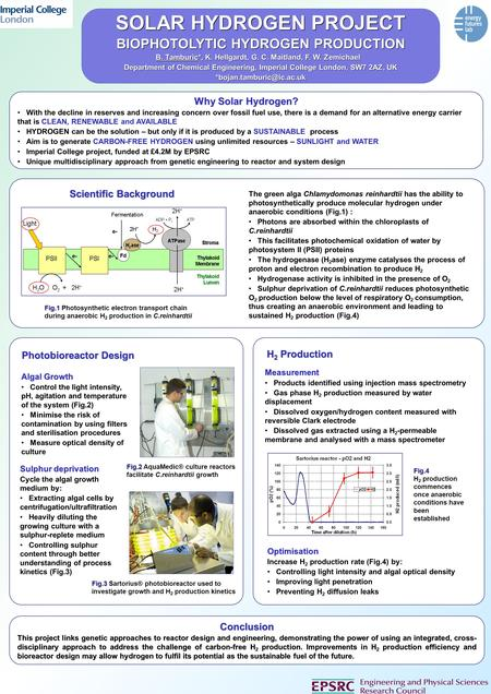 SOLAR HYDROGEN PROJECT BIOPHOTOLYTIC HYDROGEN PRODUCTION B. Tamburic*, K. Hellgardt, G. C. Maitland, F. W. Zemichael Department of Chemical Engineering,