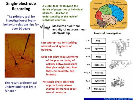 Measures electrical activity of neurons near electrode tip Single-electrode Recording The primary tool for investigation of brain- behavior relationships.