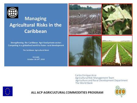 + Carlos Enrique Arce Agricultural Risk Management Team Agriculture and Rural Development Department The World Bank Strengthening the Caribbean Agri-food.