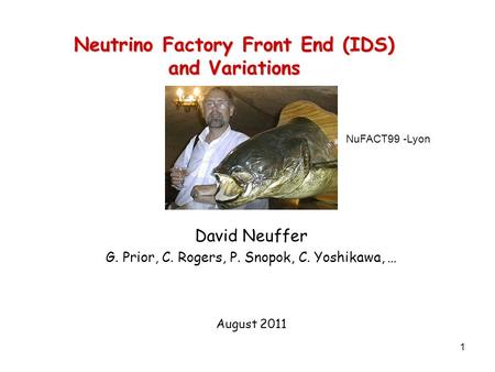 1 Neutrino Factory Front End (IDS) and Variations David Neuffer G. Prior, C. Rogers, P. Snopok, C. Yoshikawa, … August 2011 NuFACT99 -Lyon.