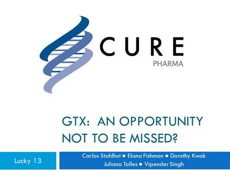 GTX: AN OPPORTUNITY NOT TO BE MISSED? Carlos Stahlhut ● Elana Fishman ● Dorothy Kwok Juliana Tolles ● Vipender Singh Lucky 13.