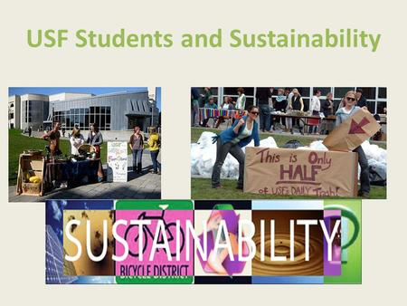 USF Students and Sustainability. Student Group 2010 The survey focused on: Demographics Climate change awareness Environmental action Environmental action.