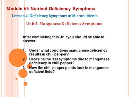 Module VI: Nutrient Deficiency Symptoms Lesson 4: Deficiency Symptoms of Micronutrients Unit 5: Manganese Deficiency Symptoms After completing this Unit.