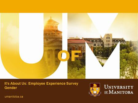 It's About Us: Employee Experience Survey Gender umanitoba.ca.