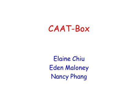 Elaine Chiu Eden Maloney Nancy Phang