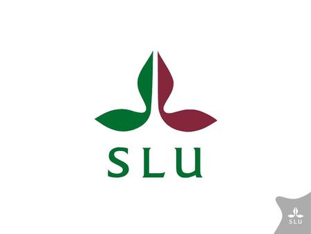 "New guidelines for PhD education at SLU The rules will be harmonized in order to contribute to ""one SLU"" get a quality assured system with tools for planning."